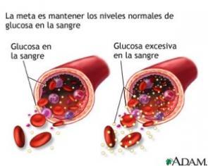 niveles normales del acido urico en sangre medicamentos para bajar el acido urico alto frutas y alimentos ricos en acido folico