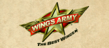 Wings Army Puebla