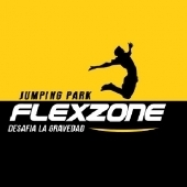 Logotipo - Flexzone - Jumping Park