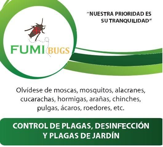 Tp fumigaciones y control de plagas fumibugs puebla for Control de plagas badajoz